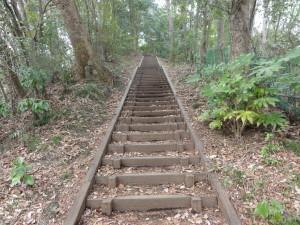 八王子城の北条氏照墓への階段は更に続く