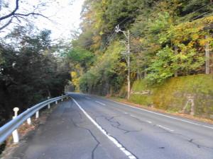 桃太郎神社へ行く山道-狭くなってきた