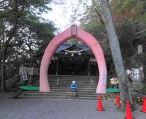 桃太郎神社-桃色の鳥居