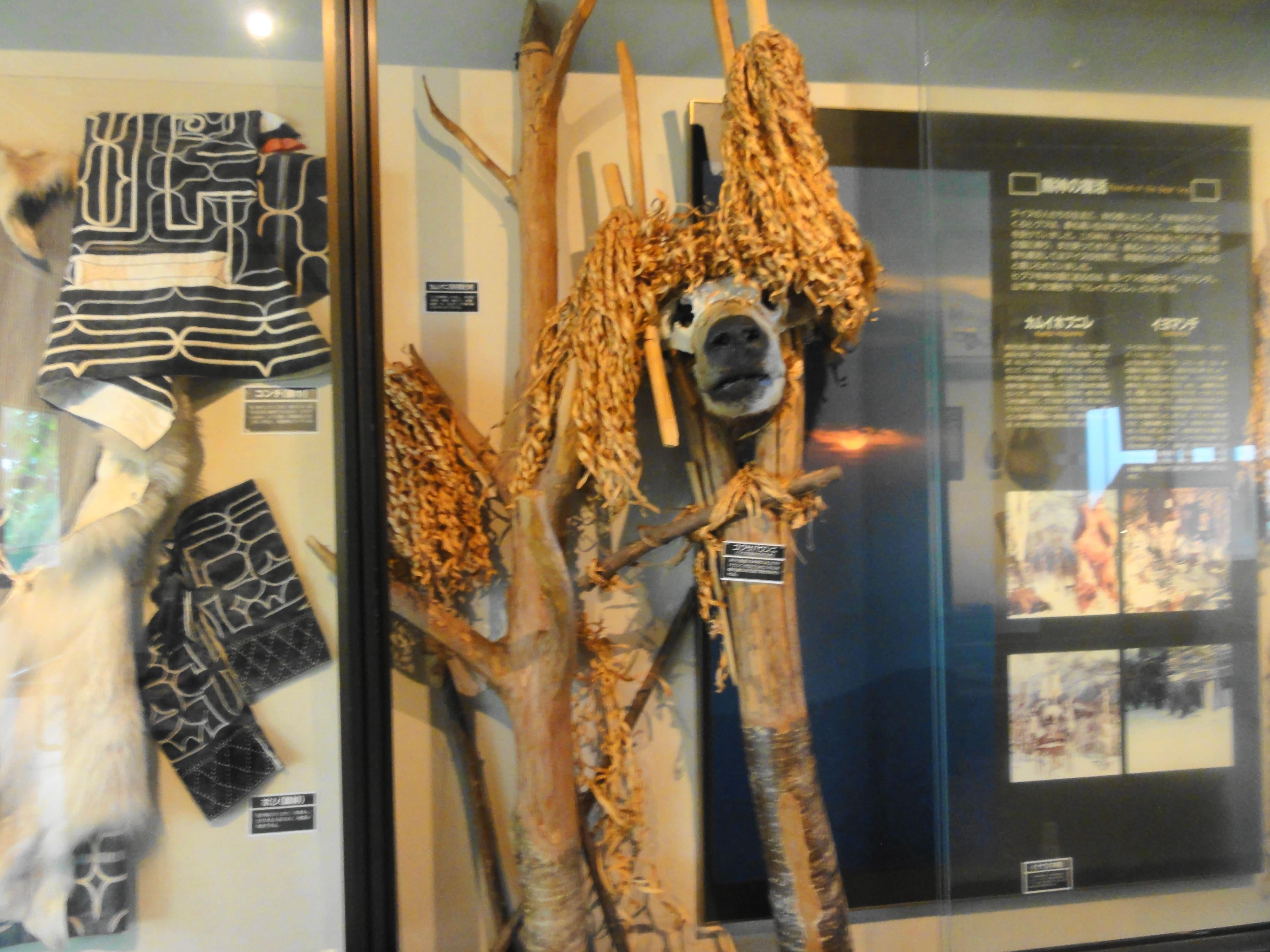 アイヌ文化の展示