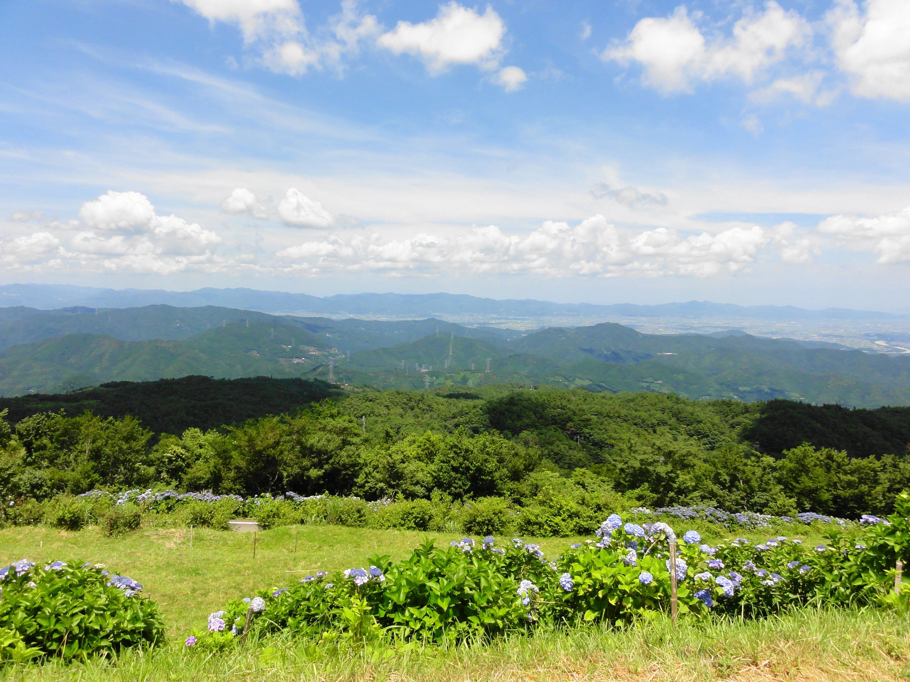 続、大川原高原の景色