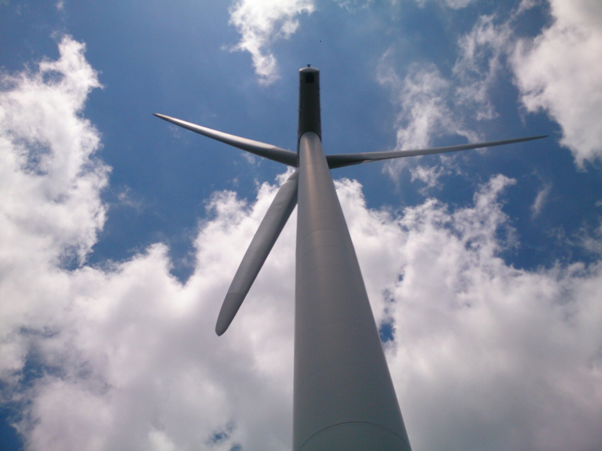 大川原高原の風車