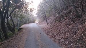 高取城-壺阪寺側の道