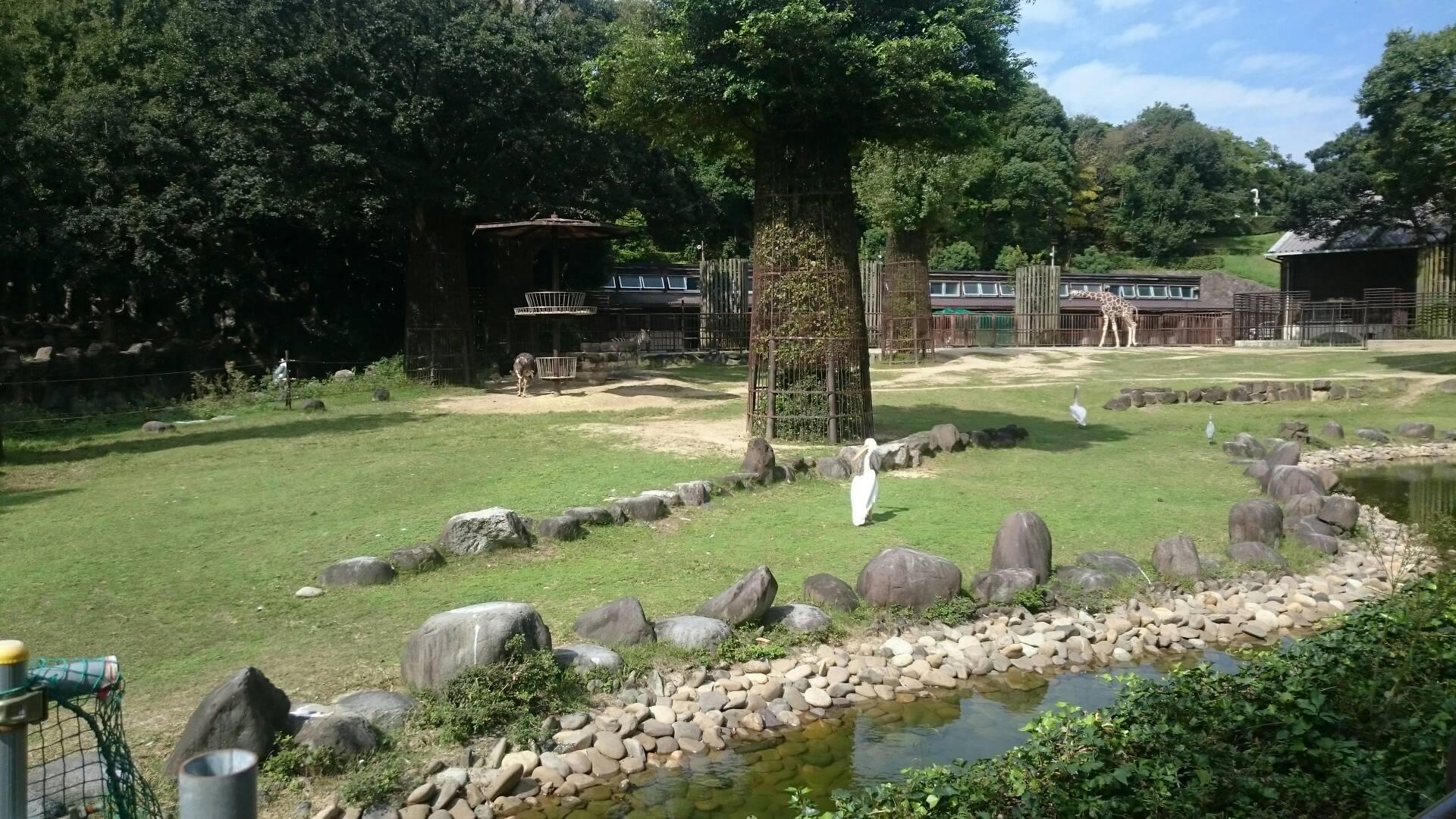 愛媛県立とべ動物園の動物たち
