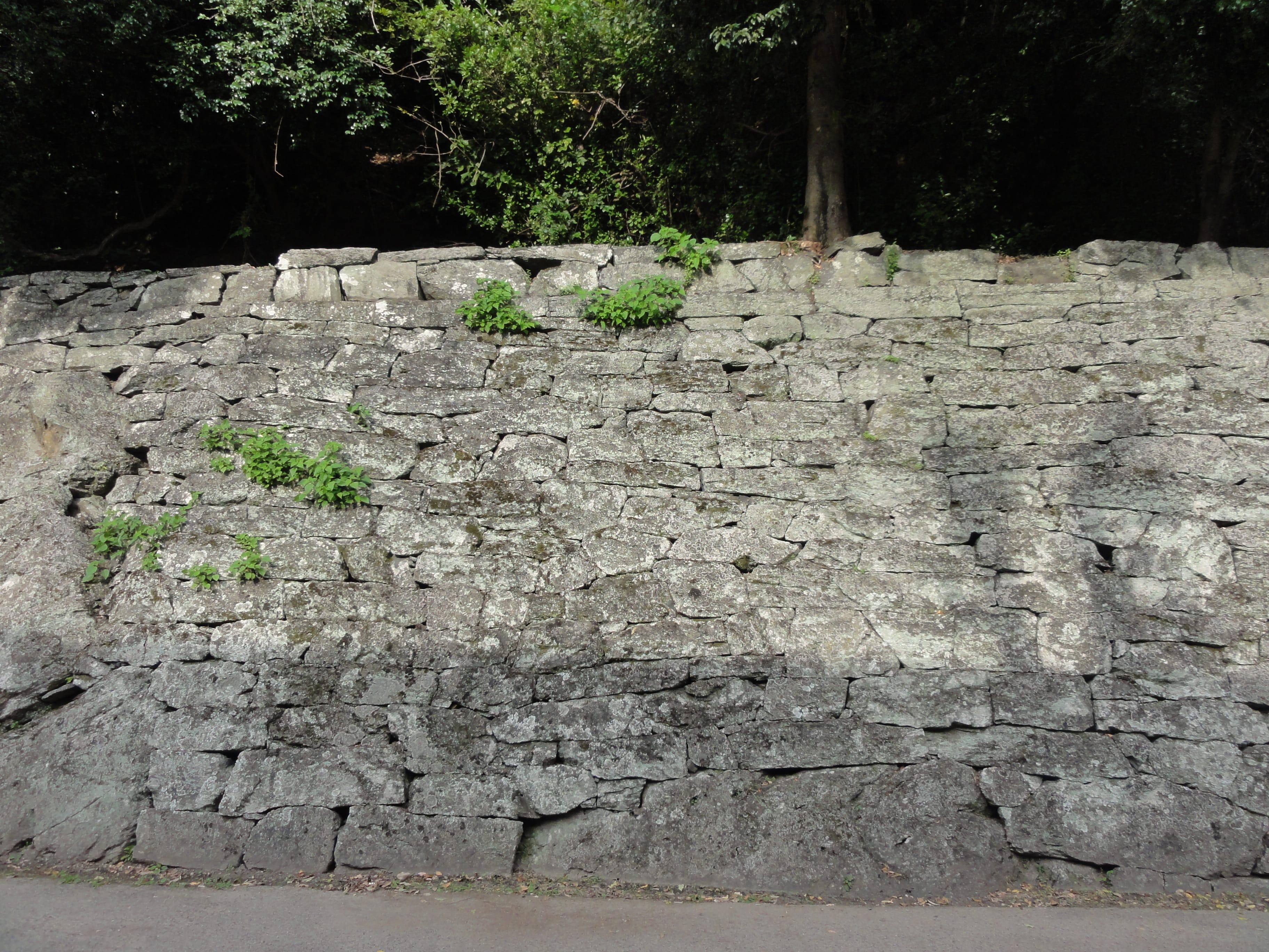 徳島中央公園の石垣