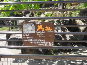 とくしま動物園-シカの案内板